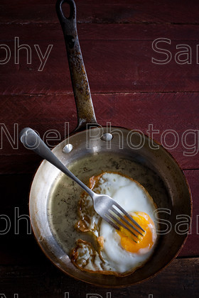 SNPFood-108 