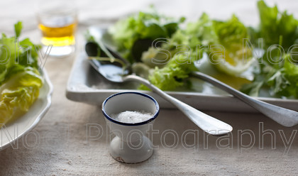 SNPFood-118 